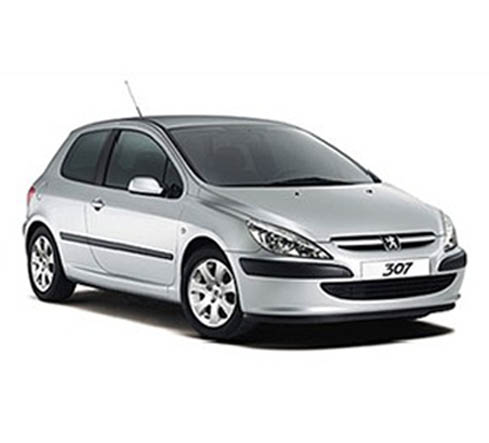 2004 test peugeot 307 xs 1 6 auto al d a. Black Bedroom Furniture Sets. Home Design Ideas